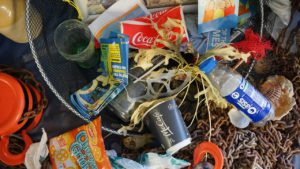 How to Go Green in Your Family Home - Ditch The Unnecessary Plastic