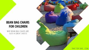 Why Bean Bag Chairs are Such a Great Choice