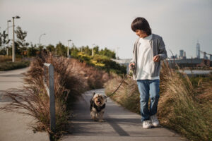 walking the neighbours dogs can turn out to be an excellent side hustle for your kids